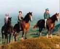 horseback1